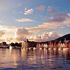 Harbor In Bergen by Cassidy Kris