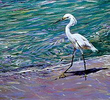 Snowy Egret on Beach by Paul Schulz