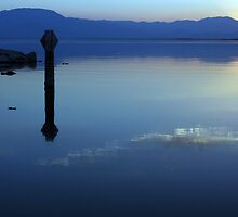 Blue Reflections by Laurie Search
