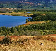 Waterton Lakes National Park - Alberta, Canada by Synevja