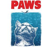 Paws Photographic Print