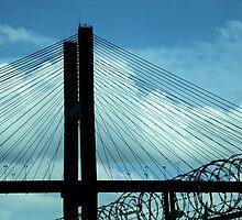 Bridge to Freedom by Michael McCasland