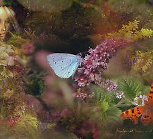 Butterfly Watcher  by EnchantedDreams