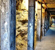 Tunnel (Biennale of Sydney '08) by andreisky
