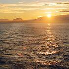 11.30pm on the Gerlache Strait by Rosie Appleton