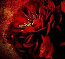Scarlet Ribbon by Judi Taylor
