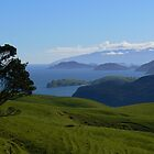 Coromandel Harbour by mrbean