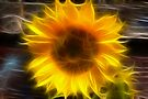 SHINY SUNFLOWER by Jo Nijenhuis