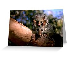 ~Possum Magic~ Greeting Card