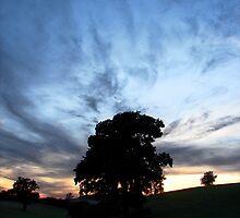 Sunset Silhouette by IndigoMidnight