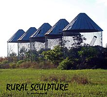 RURAL SCULPTURE by Michelle BarlondSmith