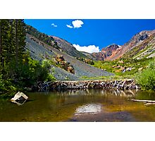 Beaver Dam, Lundy Canyon Photographic Print