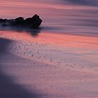 Pink Reflections by Lucy Hollis