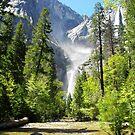 Yosemite National Park by Michael Humphrys