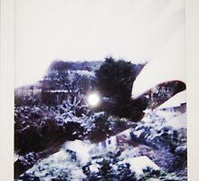 Polaroid #1 Winter Feb 2015 by alelopezm13