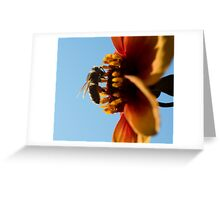 Compton Acres 15 Greeting Card
