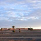 Merzouga Cyclist by travellingtwo