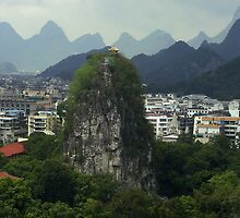 A mountain in the city - China by chrisfx