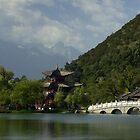 Lijiang Lake - China by chrisfx