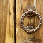 Horta Door Handle by Martin Jones