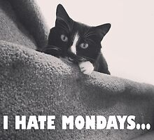 I Hate Mondays by hannahdethier