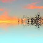 Sky Twigs by shalisa