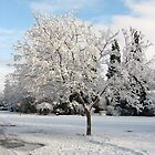 Taking a snow day by goddessteri211