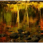 Monet autumnal 02 by Aimelle