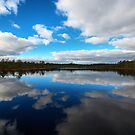 Bog Lake by Martins Blumbergs