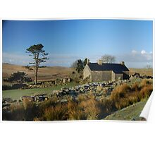 Ditsworthy Warren Farm: Dartmoor Devon Poster