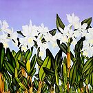 White Cattleya Orchids by joeyartist