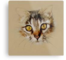 Mister Sprinkles; Tabby Cat Metal Print