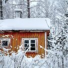 4.2.2015: Small and Abandoned Sauna I by Petri Volanen