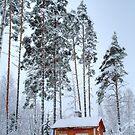 4.2.2015: Small and Abandoned Sauna III by Petri Volanen