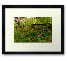 Dreamy Forest With Tulips - Impressions Of Spring Framed Print