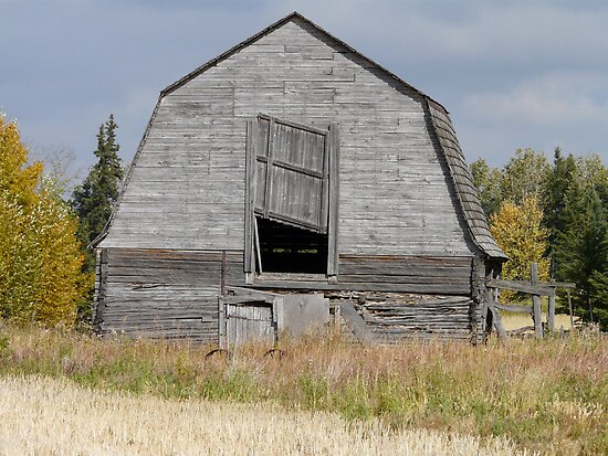 Old Barn  Archerwill Sask. Canada by MaeBelle