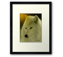 WOLF ~ GENTLE SPIRIT Framed Print