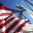 American Flag by Peggy  Zinn