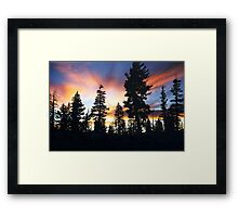 "Because He Called, ""Forest Brother..."" Framed Print"