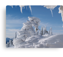 BEAUTIFUL SNOW SCULPTURES Metal Print