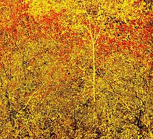 Stylized Golden and Red Shining Fall Foliage  by Mallorn