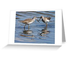 Sword Fight!! Greeting Card