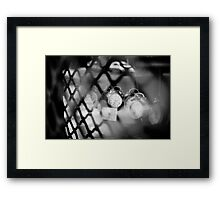 accuracy in jail Framed Print