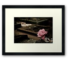 A Rose of Cloth Framed Print