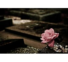A Rose of Cloth Photographic Print