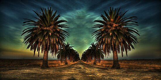 *Paradise Road* by Ben Pacificar