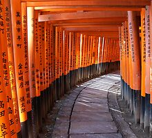 The torii gates of Fushimi Inari-taisha by Peter Zentjens