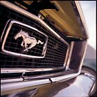 ford mustang • dijon, burgundy • 2007 by lemsgarage
