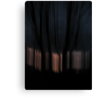 Night vs Day Canvas Print