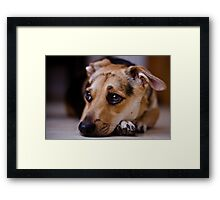 what you think Framed Print